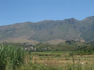 Blick zu den alban.Bergen, davor Terassenfelder