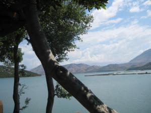 Traumhafte Ruhe am See