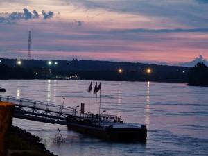 Die Donau bei Mohacs (1000x750)