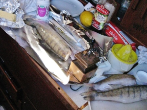 Flußfische in Alu f.d.Grill, mit Butter+Dill