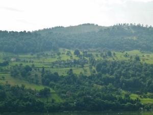 Schaut aus wie bei den Hügeln von Heiden am Schweizer Ufer (1000x750) - Kopie