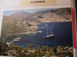 In Bozuk Bükü (1000x750)