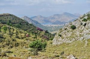 Das Tal in Richtung Bozburun
