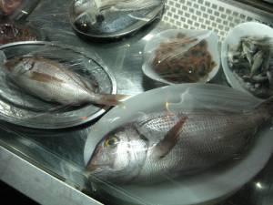Der frische Fisch in Vathi