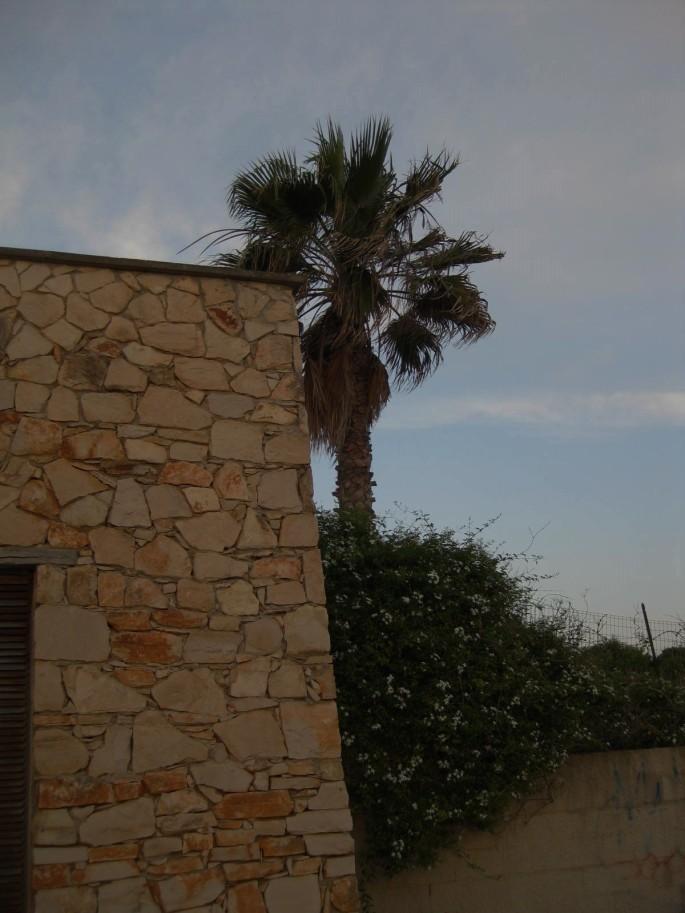 Maurer-Handwerk Stein auf Stein (1)