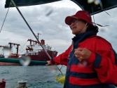 Im Feld der Großschifffahrt
