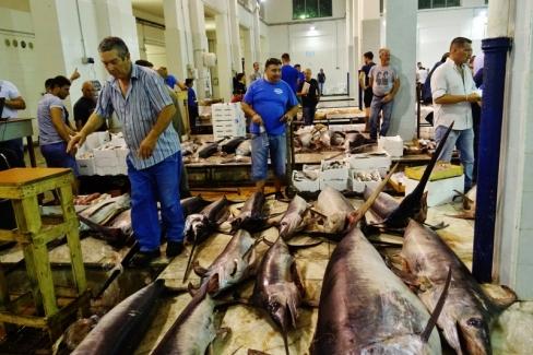 Palermos Fischmarkt