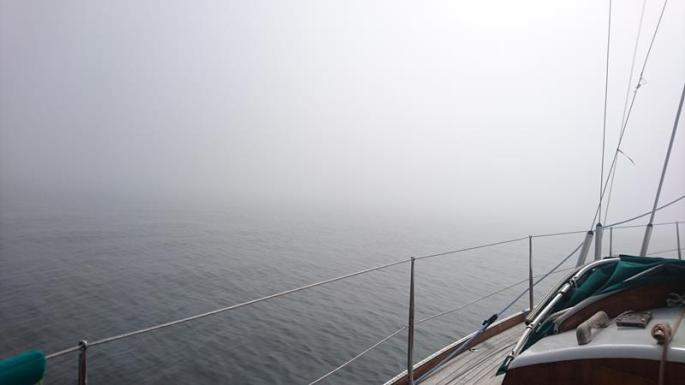 Bei Nebel nach Hölick (3) (Copy)