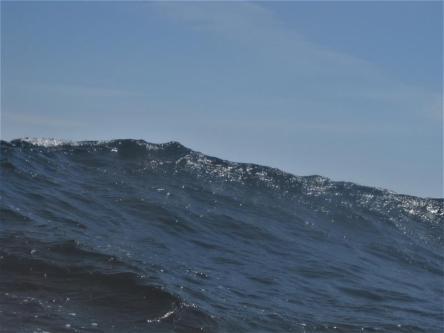 Etwas unangenehm, die Wellen (Copy)