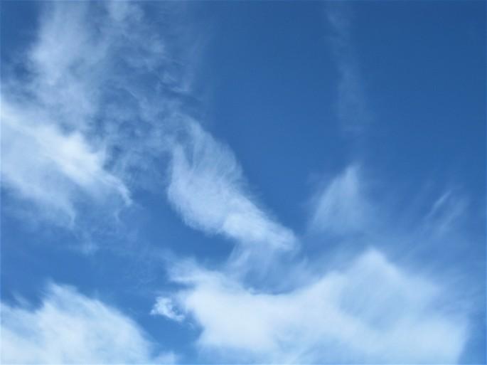 Malskären, 30.6.-1.7. Ankerbucht Wolkentaube(13)