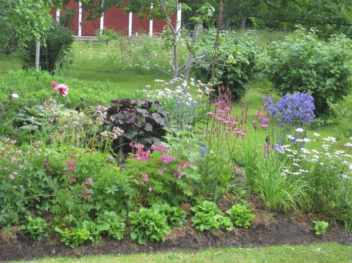Natur in Grün und Blumenpracht (1) (Copy)