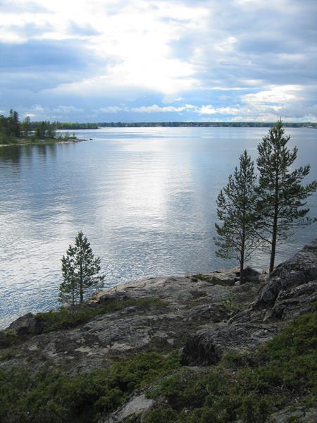 Urnatur Norrbyskär Fjordtundra (11) (Copy)