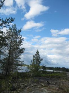 Urnatur Norrbyskär Fjordtundra (5) (Copy)