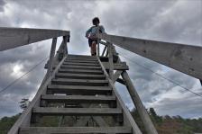 Blick nach oben (Copy)