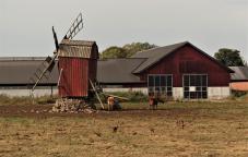 Die Mühle wird erhalten (Copy)