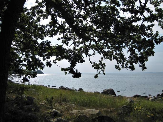 IMG_5939-wieder am Meer (Copy)