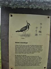 Kapellskär, Naturpfad Wald (15) (Copy)