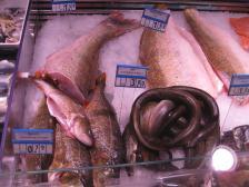 IMG_6191 Frischer Fisch Wiek (Copy)